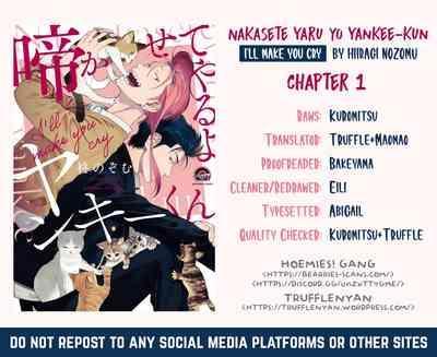 Nakasete Yaru yo Yankee5 2