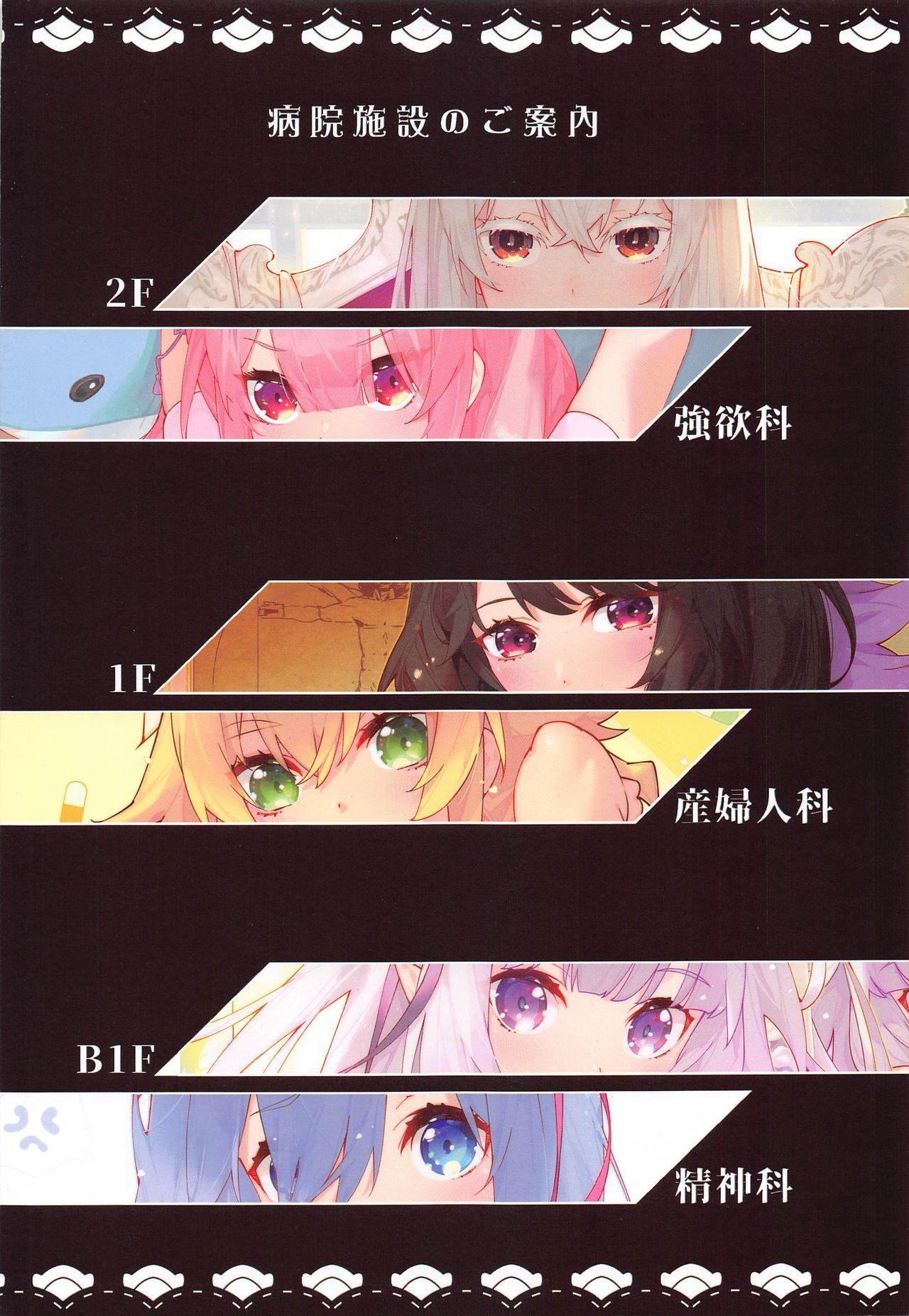 Re:Zero kara Hajimeru Shinryoukan Seikatsu 2