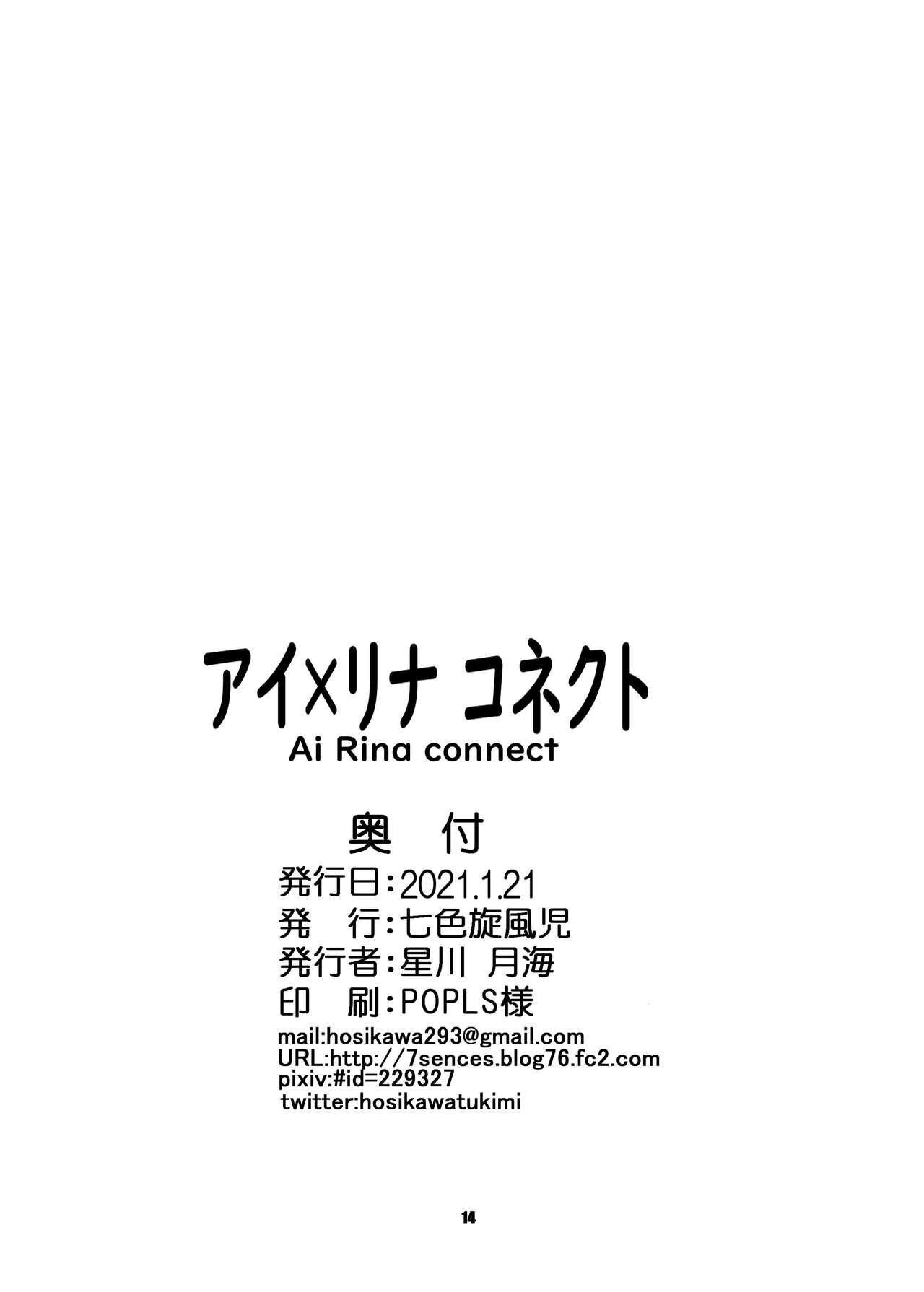 AiRina connect 14