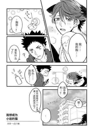我想成为小岩的猫3 I want to become Iwa-chan's Cat! 3 3